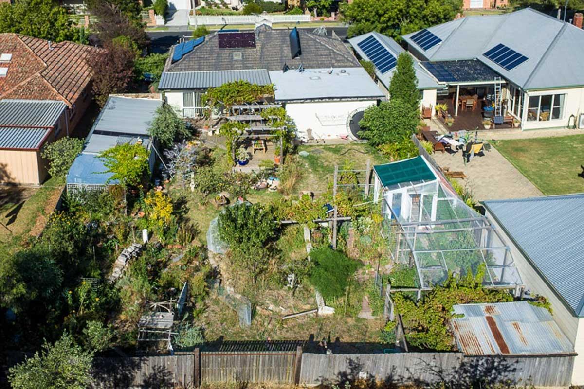 Watts Permaculture backyard 1200
